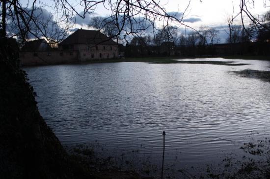 MGe_paysages du ried d'Altorf_février 2010